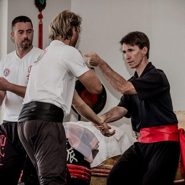 Class 1 Adults Kung Fu Image